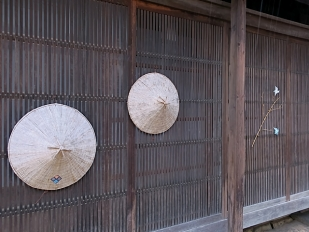 161124shikano04c.jpg
