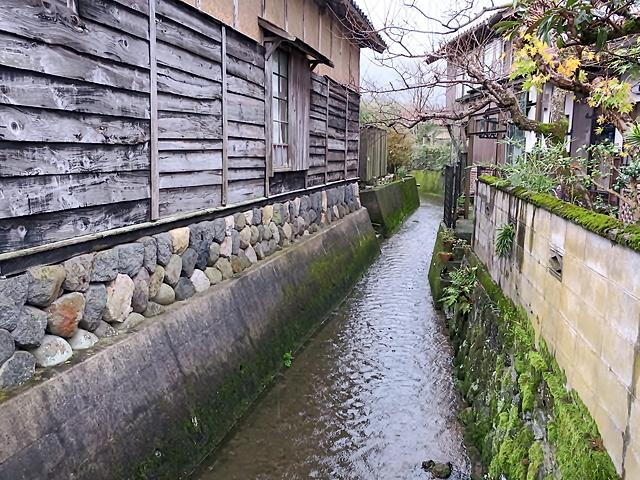 161124shikano09.jpg