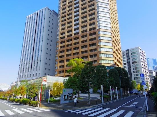 「富士見二丁目1号墳」