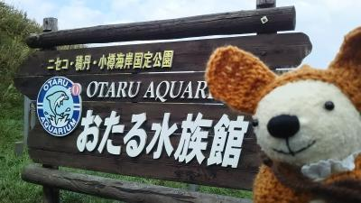 小樽は海の街のせいか、札幌よりももっともっと寒かった……