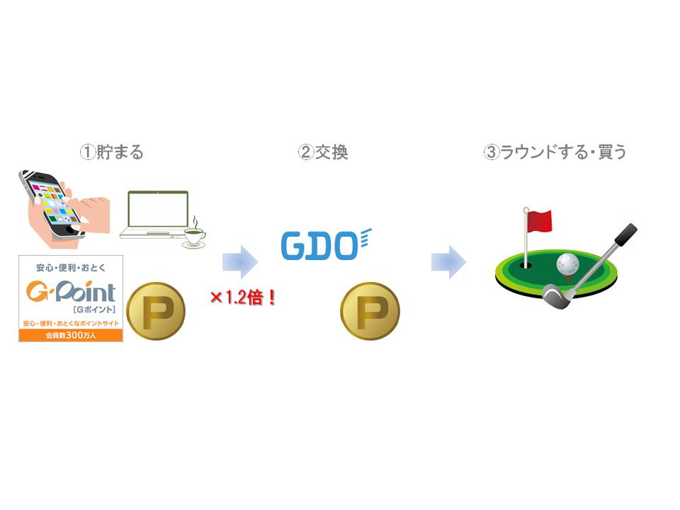 point1000GDO.jpg
