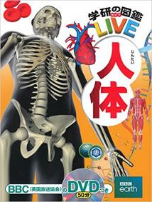 LIVE人体