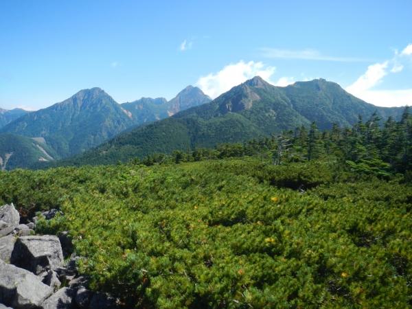 八ヶ岳 030