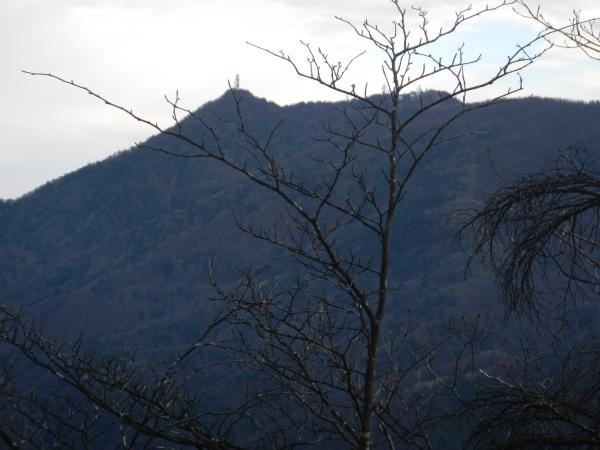 御坂黒岳 011