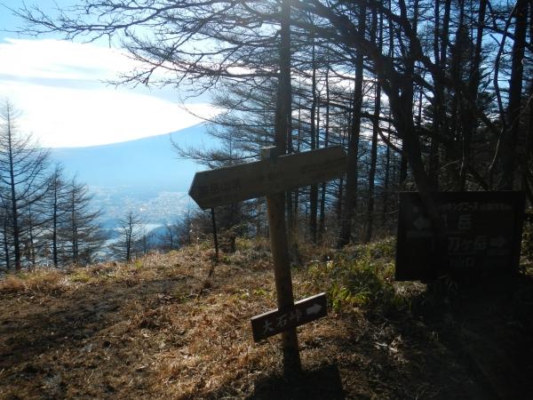 御坂黒岳 022