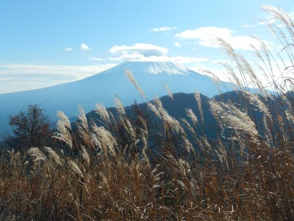 御坂黒岳 031