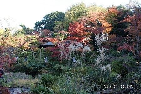 根津美術館 庭園