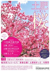 土肥桜 2017