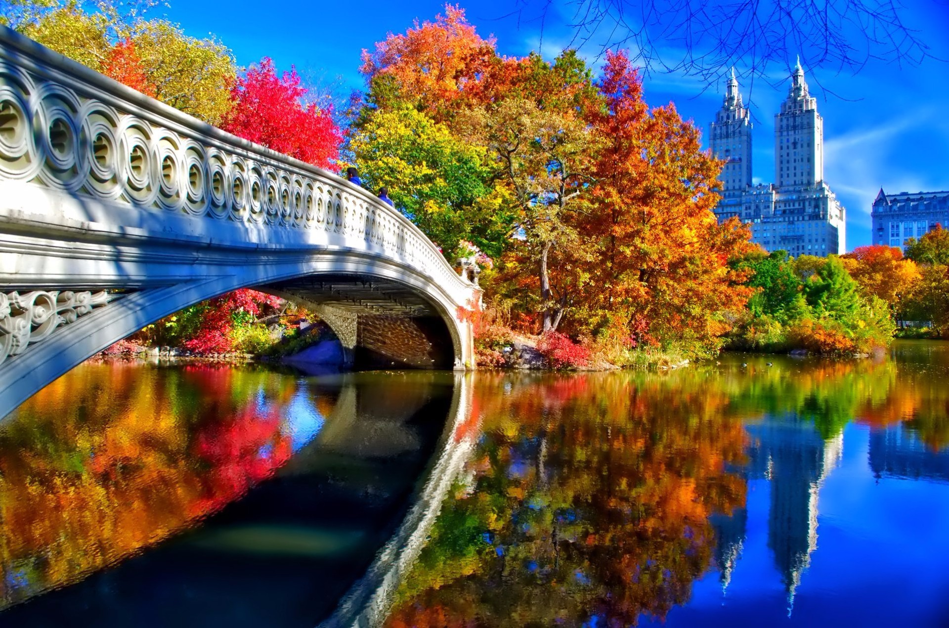 Autum in central park.jpg