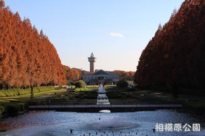 2016-12-sagamihara11.jpg