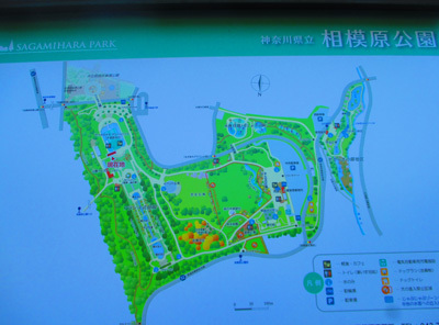 2016-12sagamihara18.jpg