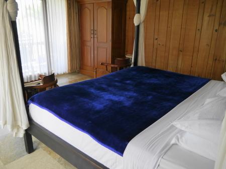 チェンダナの部屋