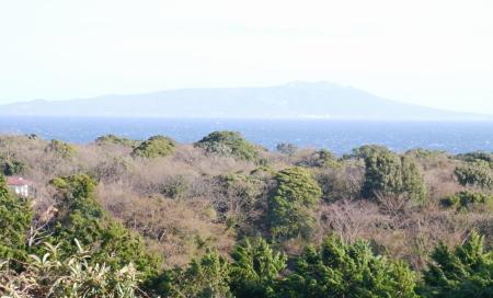ロビーから見る大島