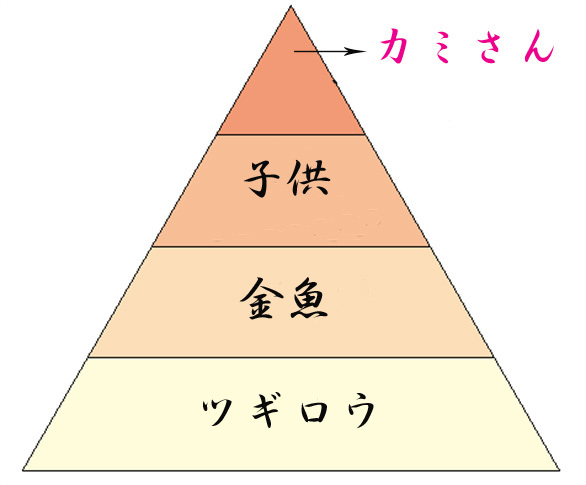 sr_spring_02bubu (586x485)