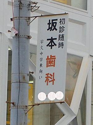 16sakamoto21.jpg