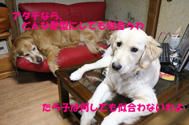 IMG_3097.jpg