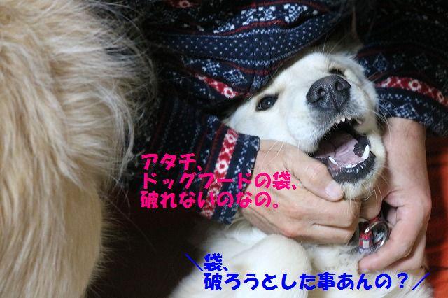 IMG_3677.jpg