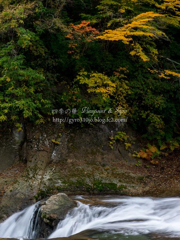 吹割渓谷 鱒飛の滝 C