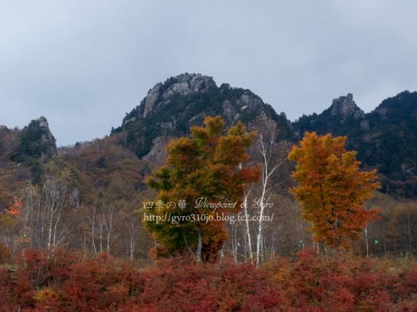 みずがき山自然公園 B