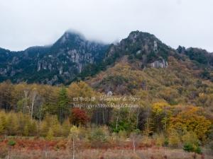みずがき山自然公園 D
