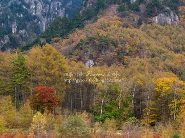 みずがき山自然公園 E