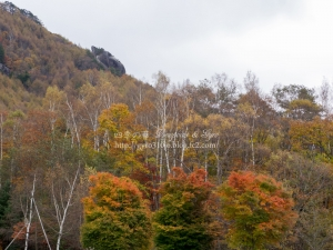 みずがき山自然公園 G
