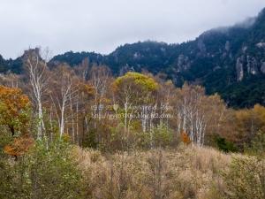 みずがき山自然公園 H