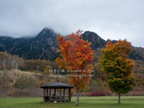 みずがき山自然公園 I