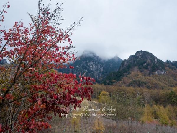 みずがき山自然公園 M