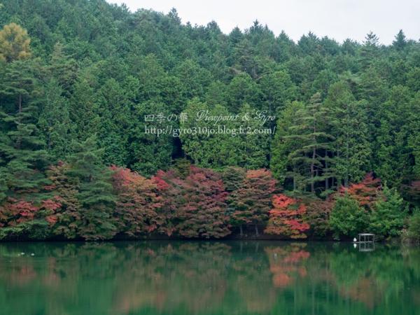 南伊奈ヶ湖 B