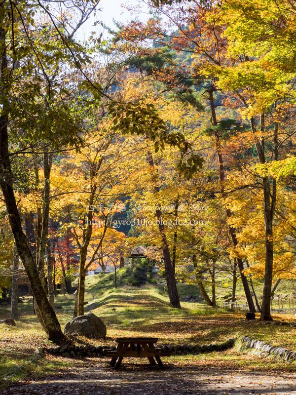 道志の湯(農村公園) A