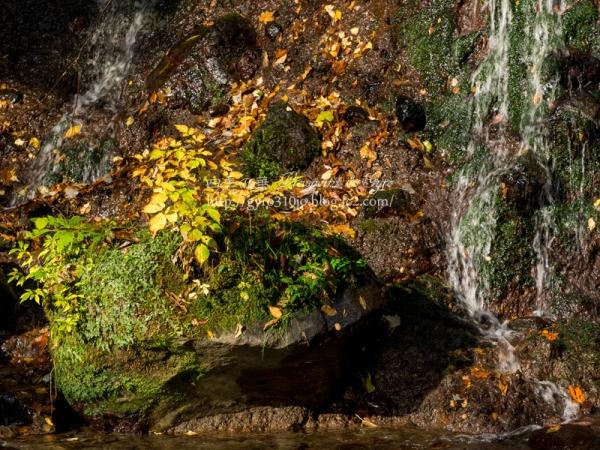 陣馬の滝 I