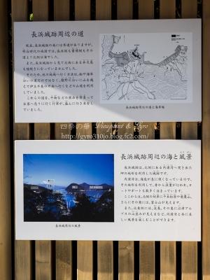長浜遺跡 G