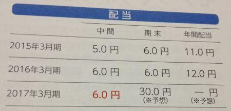 日本バルカー工業 配当の傾向