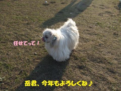 056_convert_20170109044735.jpg