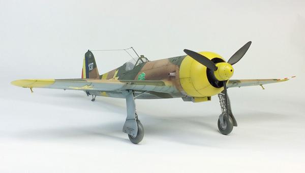 IAR-80 (4)