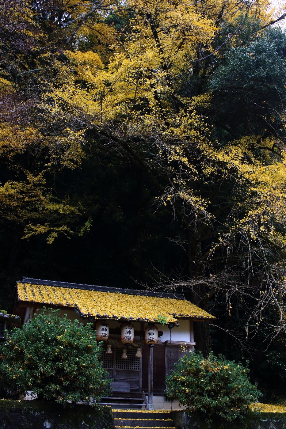 神社_20161120-4