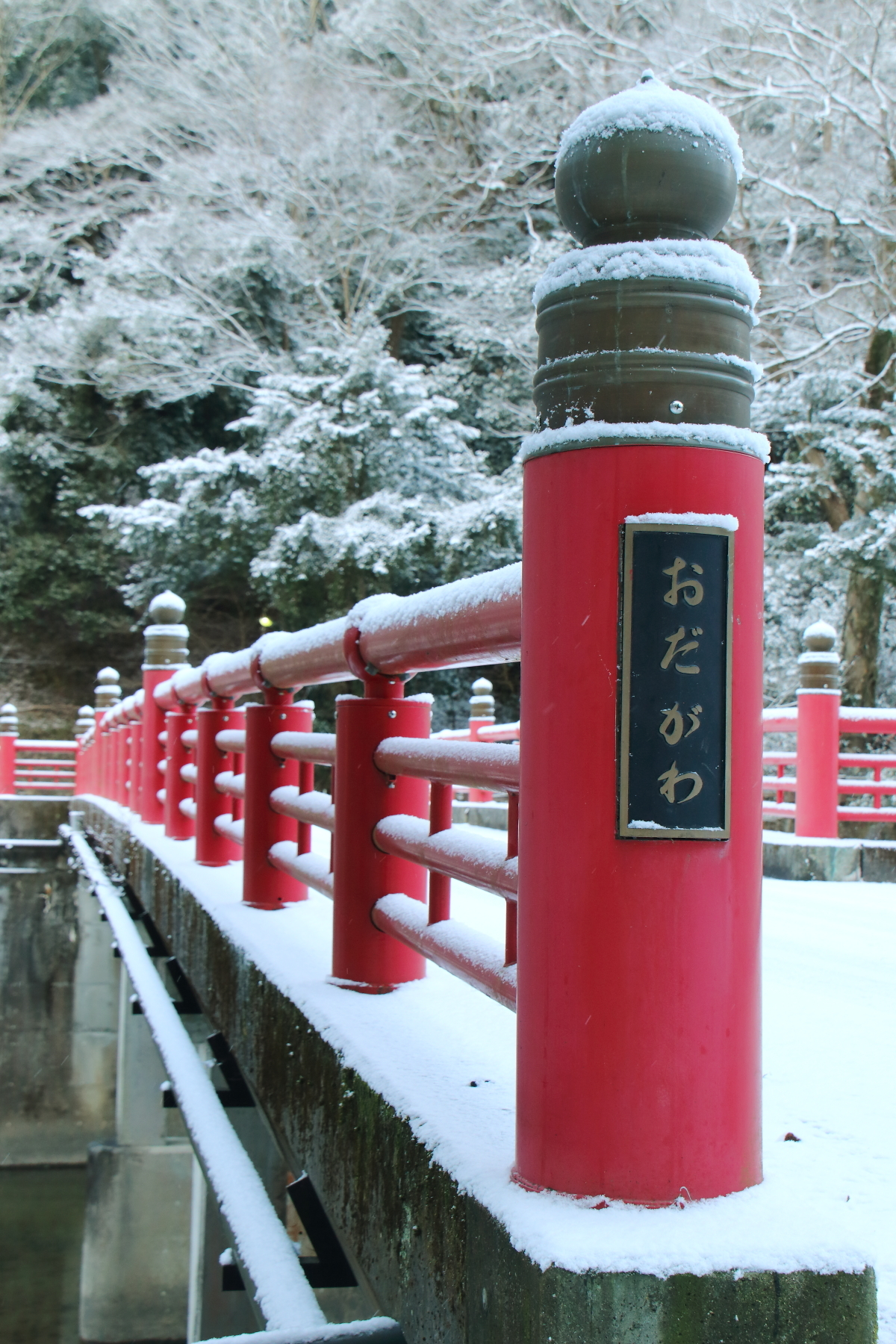雪景色_20170115-1