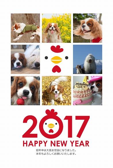 2017web_20170105215920faf.jpg