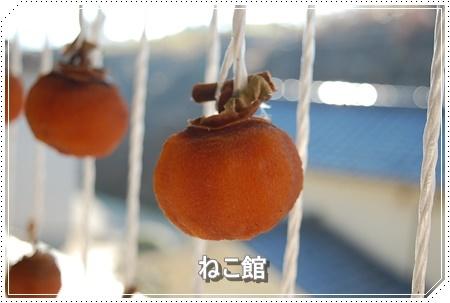 blog10_2016111810054678c.jpg