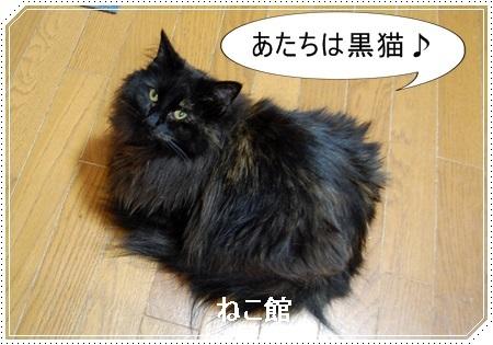 blog2_201612272147115eb.jpg