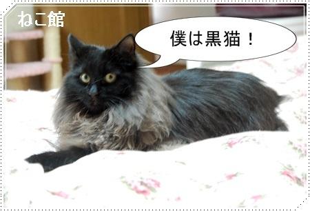 blog5_20161227220924940.jpg