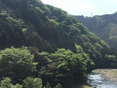 kiyosawa1.jpg