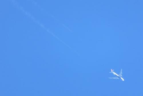 青いお腹のシップさん-飛行機雲が薄れてゆく