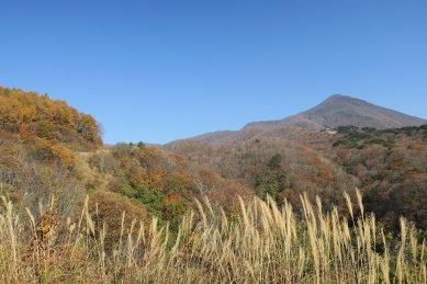 磐梯山ゴールドラインから見た裏磐梯山