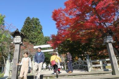 土津神社鳥居を望む