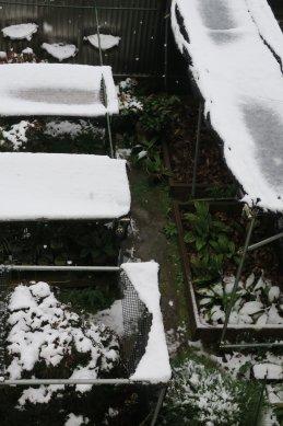 園芸コーナーの雪