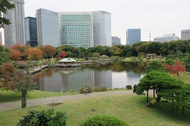 富士見山から見た潮入の池(大泉水)