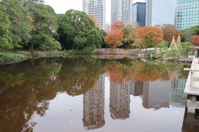 中島茶屋から見た紅葉