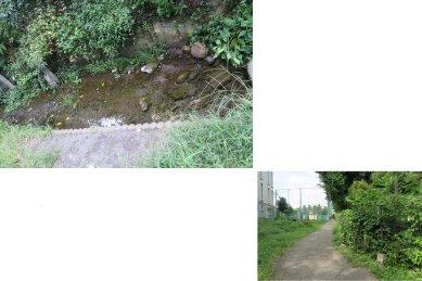 目黒川の源流のひとつ(空川)